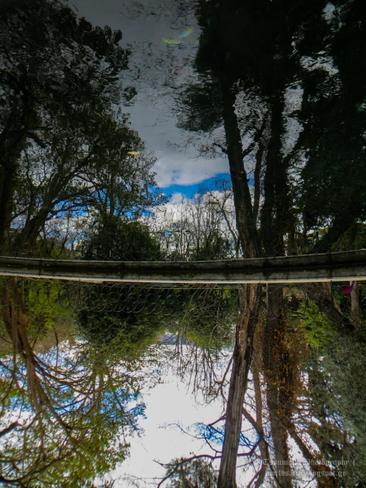 γιαννης τσουμαλης, γιάννης τσούμαλης, το κρίνο, a world's attic, A worlds attic, giannis tsoumalis, worldsattic.blogspot.gr, γιαγιά, μια μικρή ιστορία
